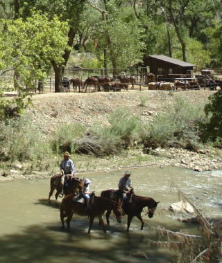 Horseback ride tours at Zion National Park.