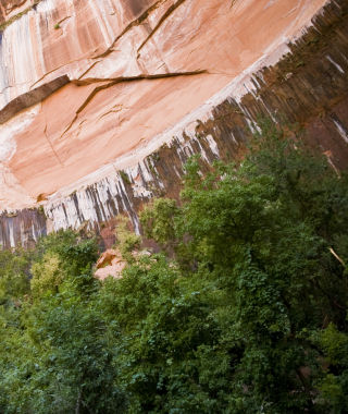 Geology at Zion National Park
