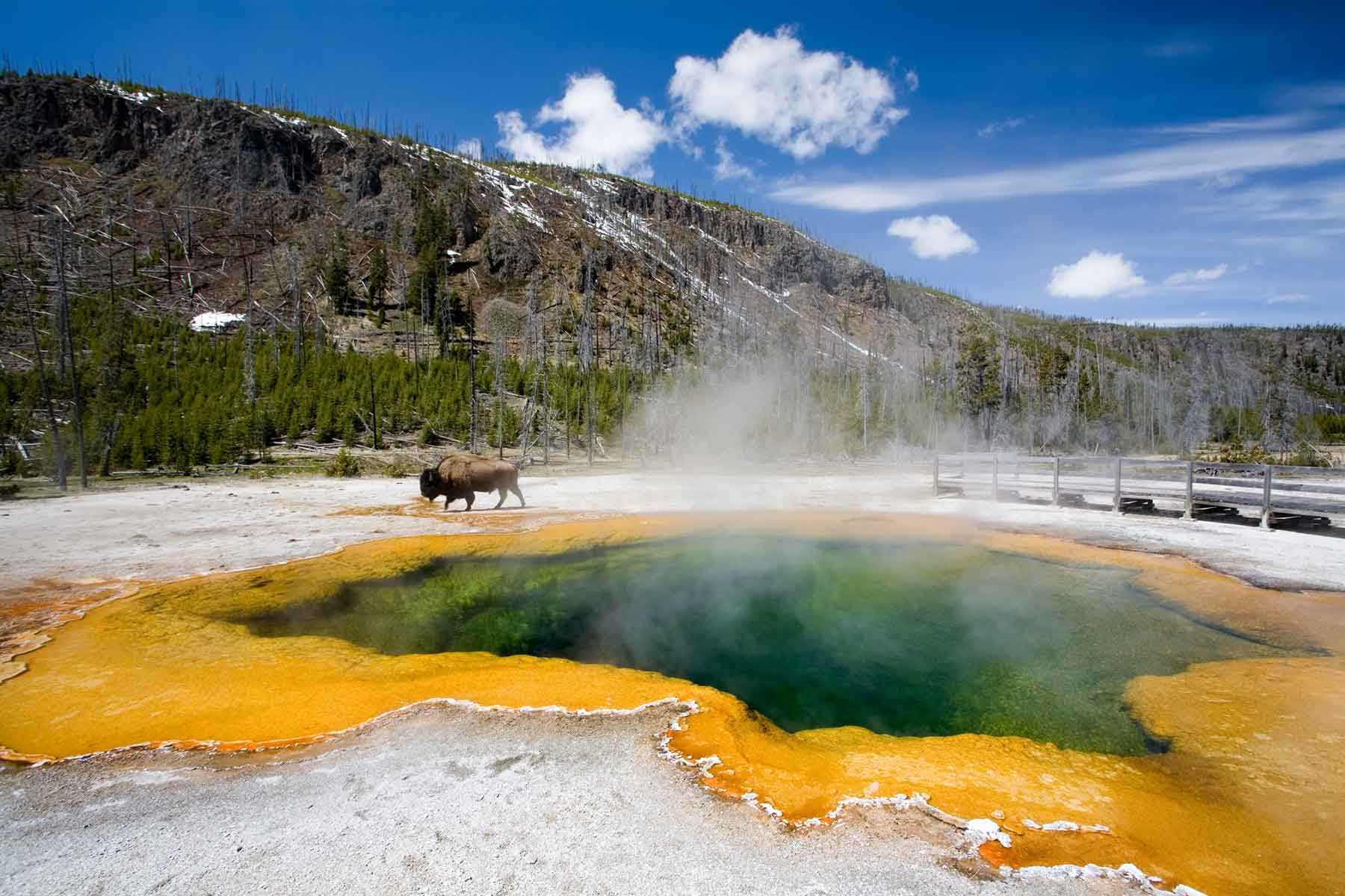Yellowstone National Park Emerald Pool