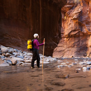 Zion Narrows Service Project