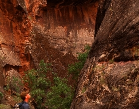 Zion Narrows Hiker