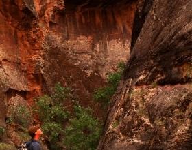 Zion Narrows Hiker